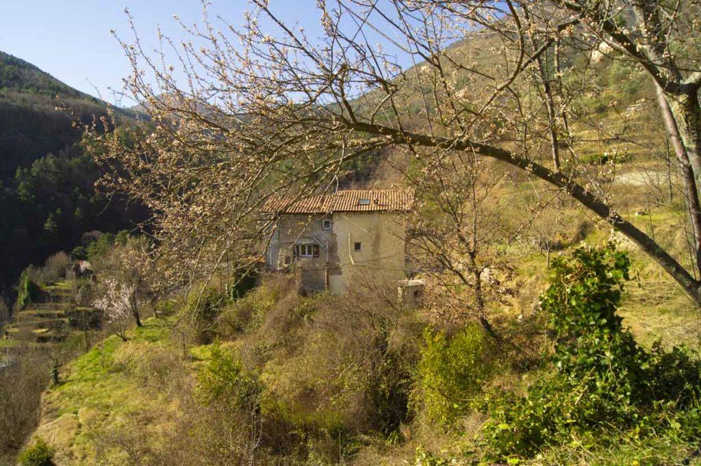 Unser Garten im Roya-Tal
